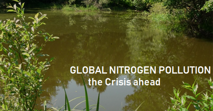 "<a href=""/global-nitrogen-pollution-crisis"">Global Nitrogen Pollution Crisis</a>"