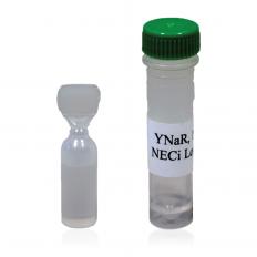 Nitrate Reductase: YNaR