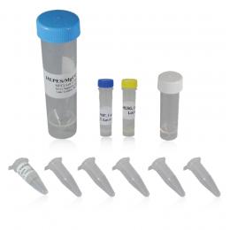Test Tube Format Phosphate Test Kit: Standard Range, 25 Samples