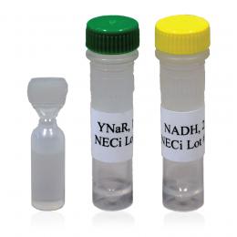 YNaR + NADH Reagent Packs